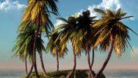 Il y a dix jours, j'étais en Haïti par 30 °C – sans avoir avecmoi aucun de mes vêtements d'été, séjour improviséoblige.