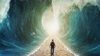 La Parole de vie de ce mois rappelle un verset du cantique de Moïse, dans lequel Israël exalte l'intervention de Dieu dans son histoire.